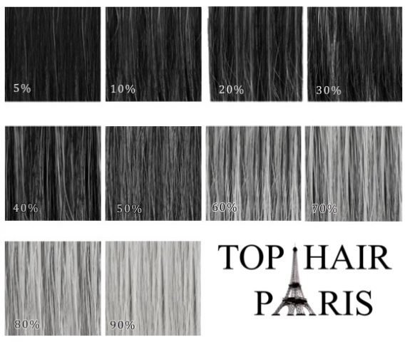 Grey Hair Colour Chart